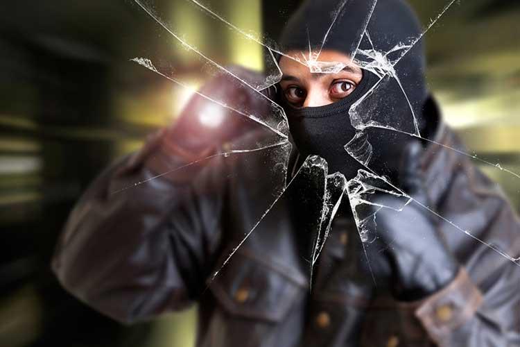 seattle burglar alarm systems